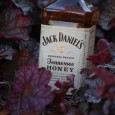 JackDanielsHoney