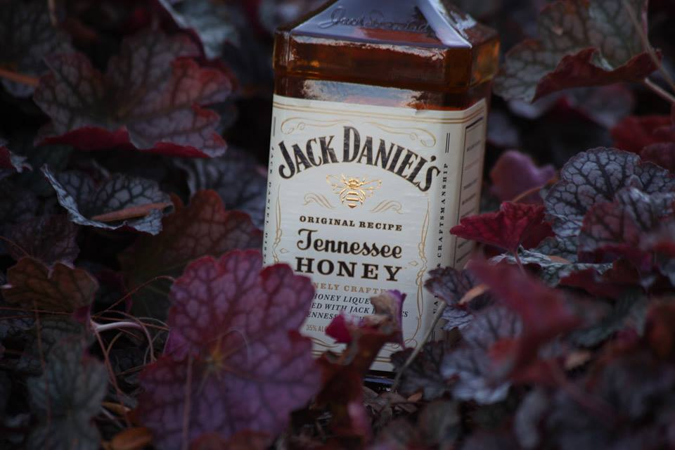 Review: Jack Daniels Tennessee Honey